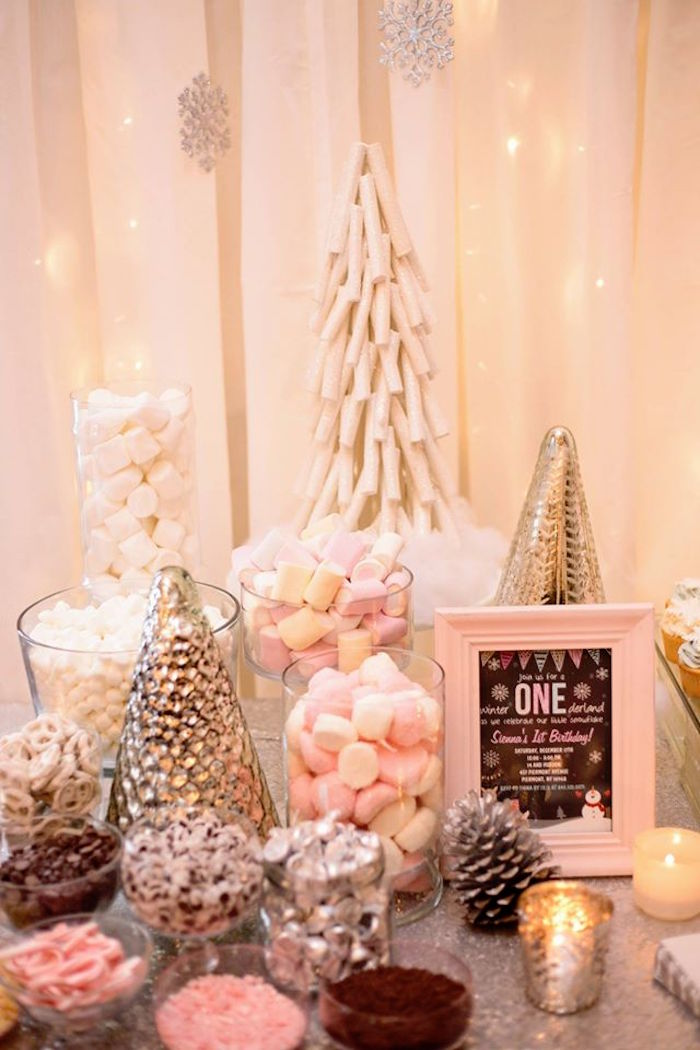 Kara s party ideas winter onederland first birthday