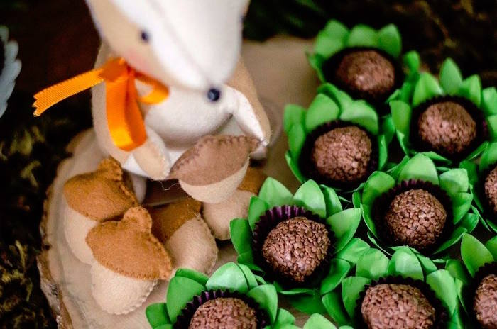 Woodland jungle brigadeiros from an Adventurous Animal Birthday Party on Kara's Party Ideas | KarasPartyIdeas.com (19)
