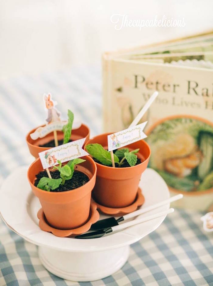 Planted pots from a Beatrix Potter Peter Rabbit Birthday Party on Kara's Party Ideas | KarasPartyIdeas.com (21)