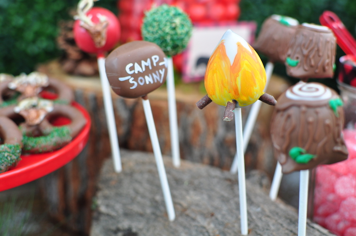 Camp cake pops from a Winter Camping Themed Birthday Party on Kara's Party Ideas | KarasPartyIdeas.com (13)