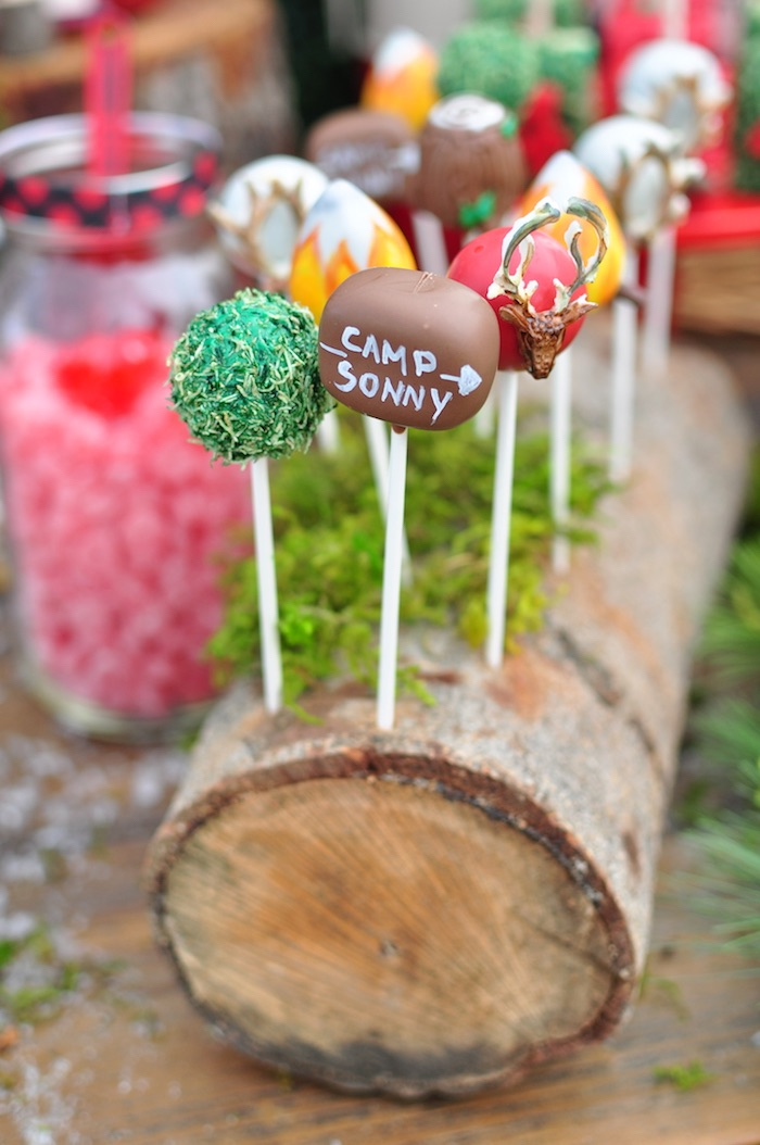 Camp cake pops from a Winter Camping Themed Birthday Party on Kara's Party Ideas | KarasPartyIdeas.com (8)