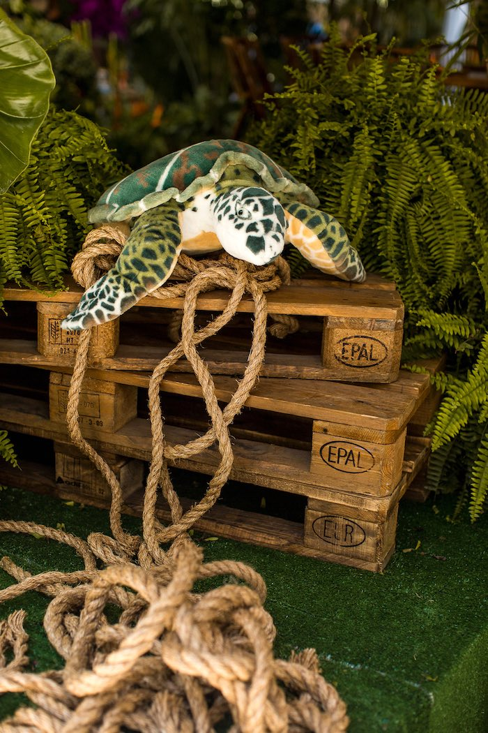 Turtle from an American Girl Doll Lea Clark - Rainforest Birthday Party on Kara's Party Ideas | KarasPartyIdeas.com (52)