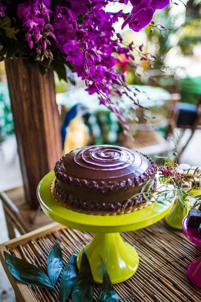Chocolate cake from an American Girl Doll Lea Clark - Rainforest Birthday Party on Kara's Party Ideas   KarasPartyIdeas.com (21)