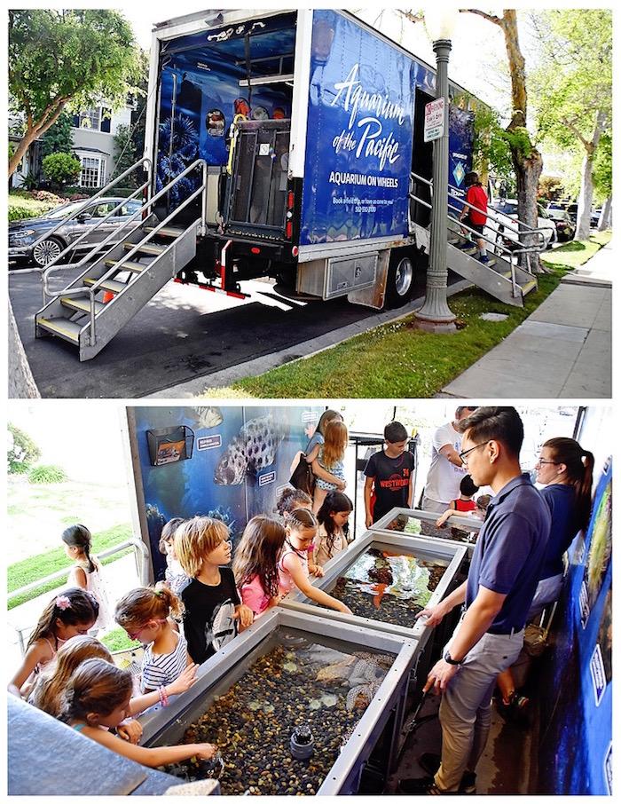 Transportable aquarium from An Under the Sea Bash on Kara's Party Ideas | KarasPartyIdeas.com (8)