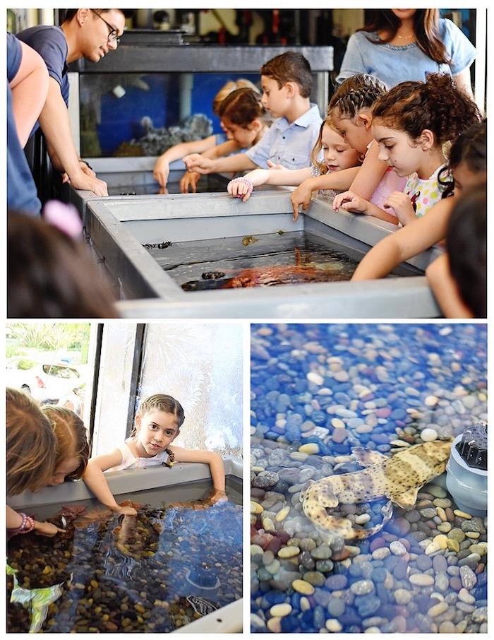 Transportable aquarium from An Under the Sea Bash on Kara's Party Ideas   KarasPartyIdeas.com (5)