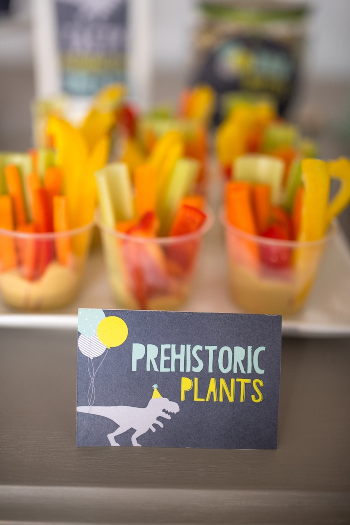 'Prehistoric Plants' veggie cups from a Modern Dinosaur Birthday Party on Kara's Party Ideas | KarasPartyIdeas.com (26)