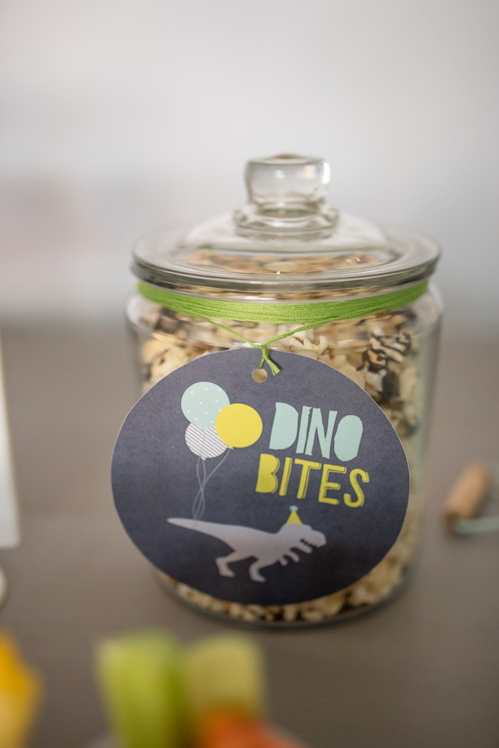 Dino Bites from a Modern Dinosaur Birthday Party on Kara's Party Ideas | KarasPartyIdeas.com (29)
