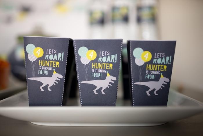 Dinosaur snack + popcorn boxes from a Modern Dinosaur Birthday Party on Kara's Party Ideas | KarasPartyIdeas.com (28)
