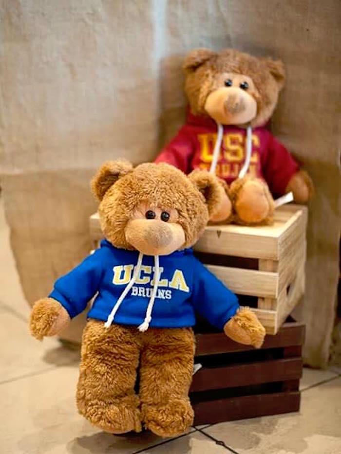 Teddy Bears from a Teddy Bear Picnic Birthday Party on Kara's Party Ideas | KarasPartyIdeas.com (20)