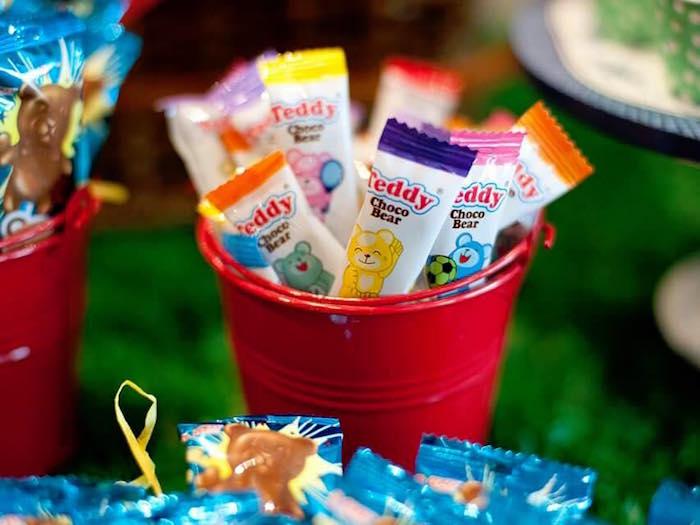 Chocolate teddy bears from a Teddy Bear Picnic Birthday Party on Kara's Party Ideas | KarasPartyIdeas.com (18)