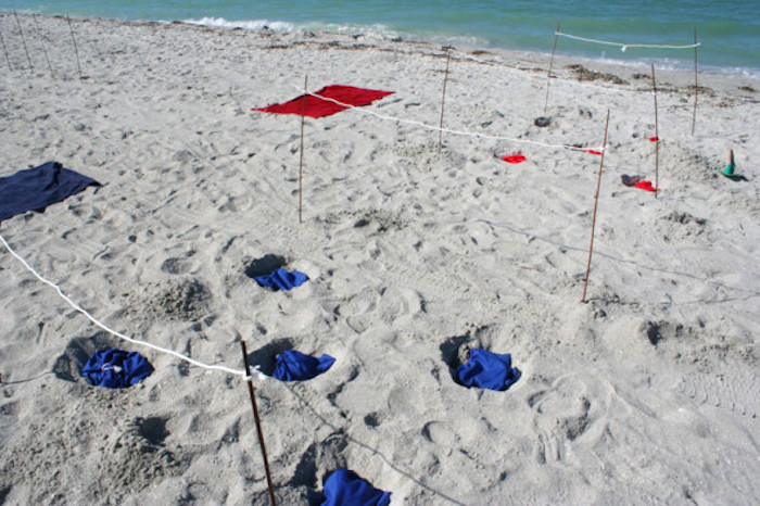"Beach challenge from a ""Survivor"" Themed Summer Party on Kara's Party Ideas 