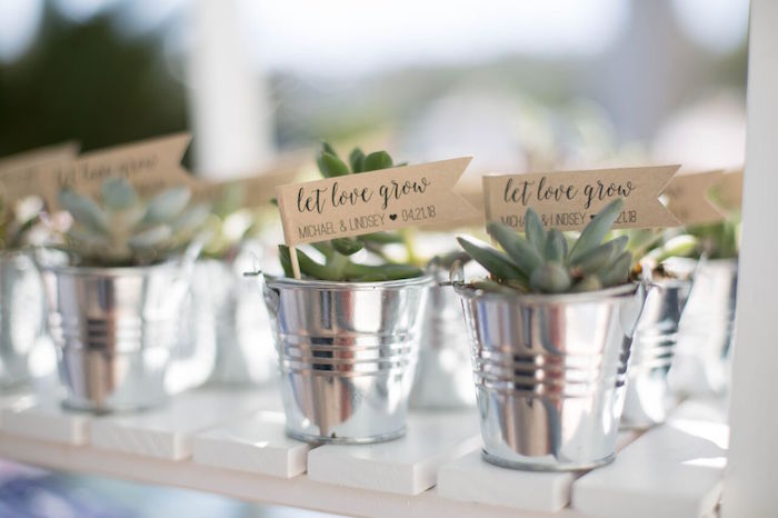 Succulent favors from a Boho Rustic Chic Engagement Party on Kara's Party Ideas | KarasPartyIdeas.com (18)