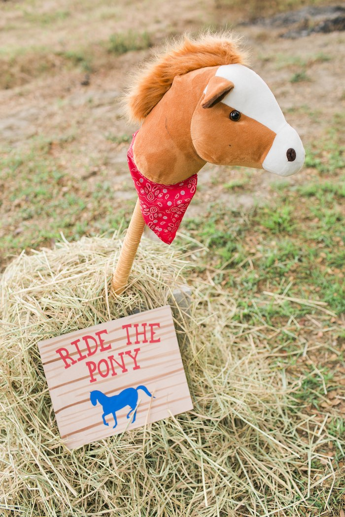 Stick pony from a Farm Birthday Party on Kara's Party Ideas | KarasPartyIdeas.com (43)