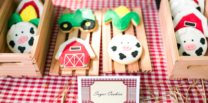 Farm Birthday Party on Kara's Party Ideas | KarasPartyIdeas.com (5)