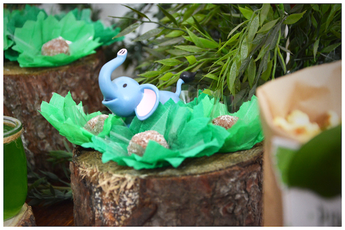 Truffles from a Jungle Animal Birthday Party on Kara's Party Ideas | KarasPartyIdeas.com (19)