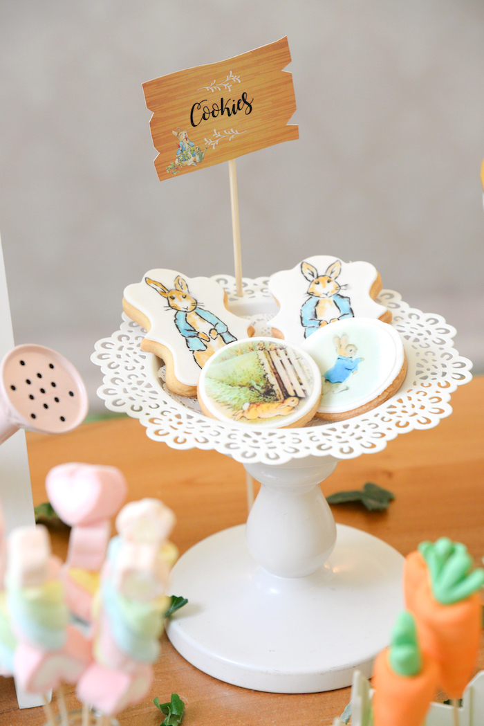 Peter Rabbit Cookies from a Peter Rabbit Garden Birthday Party on Kara's Party Ideas | KarasPartyIdeas.com (12)
