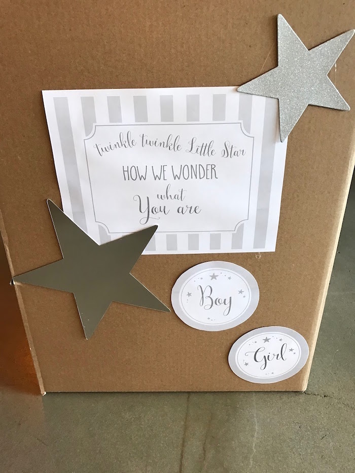 Reveal box from a Rustic Twinkle Star Gender Reveal Baby Shower on KARA'S PARTY IDEAS | KarasPartyIdeas.com (34)