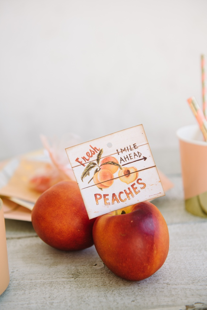 Peaches from a Sweet As A Peach 1st Birthday Party on Kara's Party Ideas | KarasPartyIdeas.com (12)