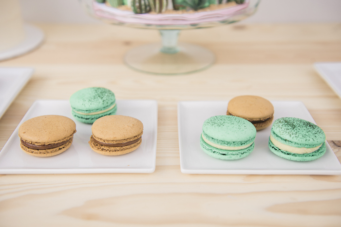 "Macarons from a ""Desert Love"" Cactus Themed Birthday Party on Kara's Party Ideas 
