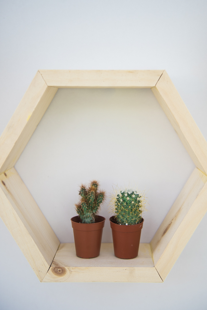 "Wood hexagon wall hanging adorned with potted cacti from a ""Desert Love"" Cactus Themed Birthday Party on Kara's Party Ideas 