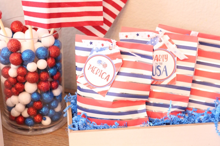 4th of July Party on Kara's Party Ideas | KarasPartyIdeas.com (17)