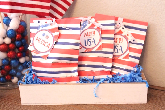 Favor bags from a 4th of July Party on Kara's Party Ideas | KarasPartyIdeas.com (8)