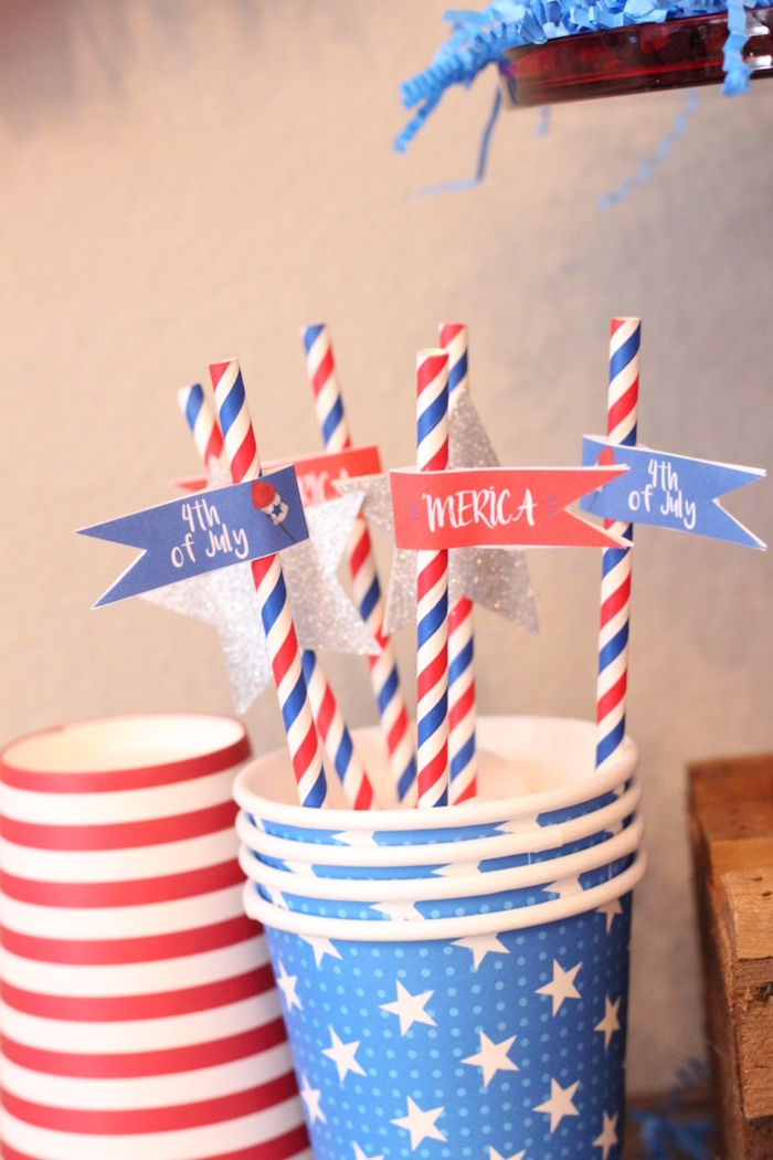 4th of July Party on Kara's Party Ideas | KarasPartyIdeas.com (20)