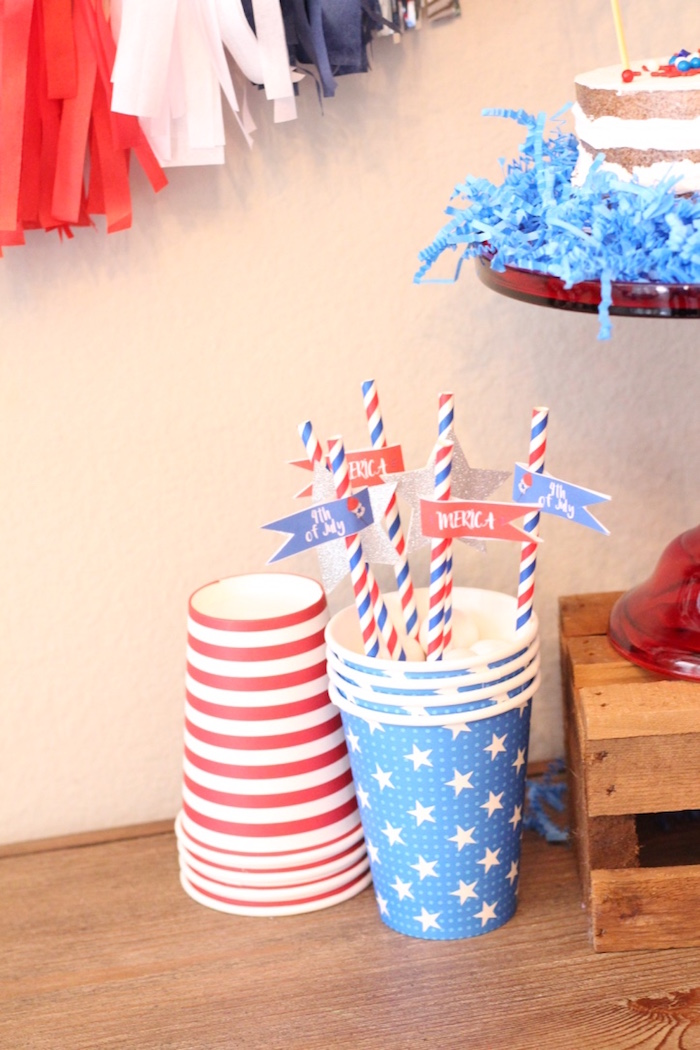 4th of July Party on Kara's Party Ideas | KarasPartyIdeas.com (19)