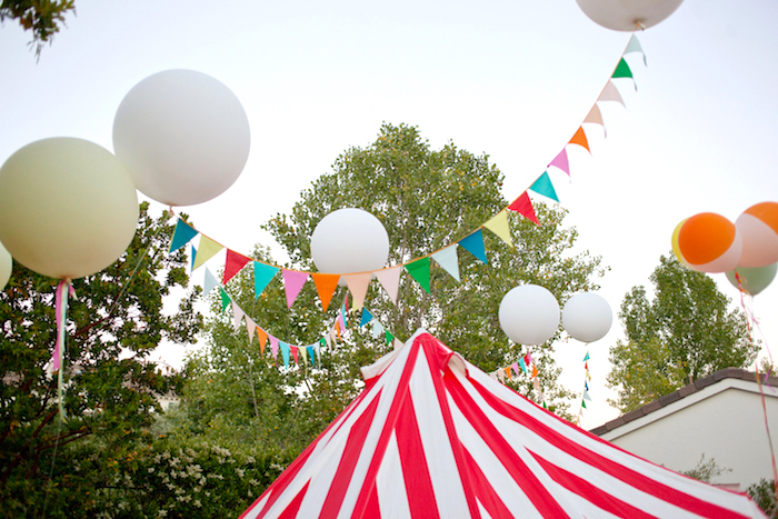 5th Annual County Fair Birthday Party On Karas Ideas