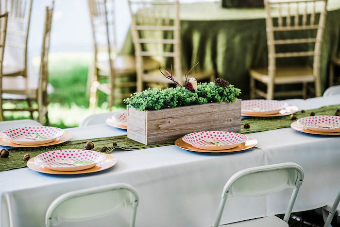 Guest table from an Enchanted FOURest Birthday Party on Kara's Party Ideas | KarasPartyIdeas.com (54)