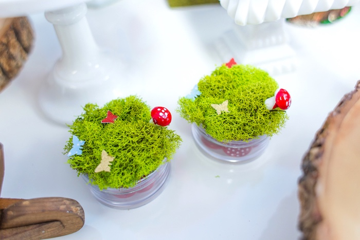 Moss favors from a Little Red Riding Hood Birthday Party on Kara's Party Ideas | KarasPartyIdeas.com (37)