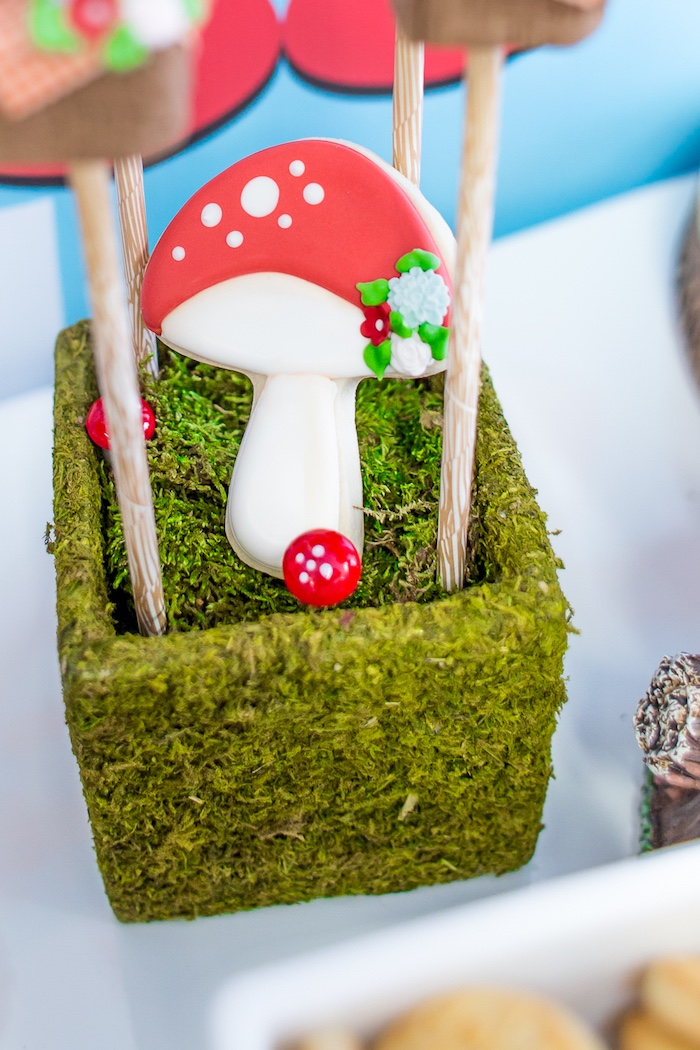 Toadstool cookie from a Little Red Riding Hood Birthday Party on Kara's Party Ideas | KarasPartyIdeas.com (24)