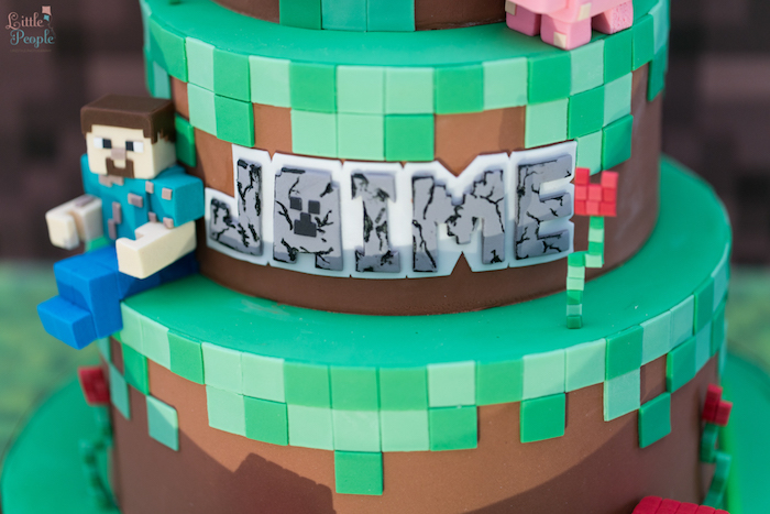 Cake detail from a Minecraft Birthday Party on Kara's Party Ideas | KarasPartyIdeas.com (36)