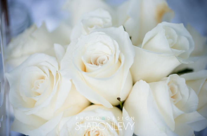White roses from a Swan Lake Birthday Party on Kara's Party Ideas   KarasPartyIdeas.com (12)