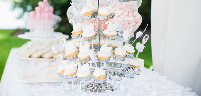 Swan Lake Birthday Party on Kara's Party Ideas | KarasPartyIdeas.com (2)