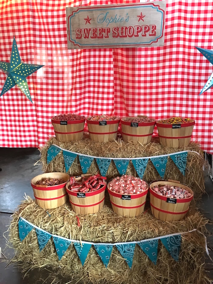 "Sweet Shop from a ""Barn"" Mitzvah - A Barnyard Themed Bat MItzvah on Kara's Party Ideas | KarasPartyIdeas.com (16)"