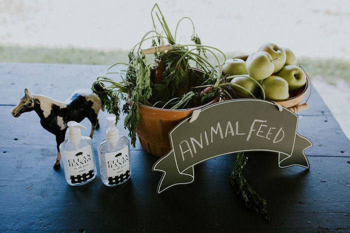 Animal Feed for Petting Zoo from a Modern Vintage Farm-to-Table Birthday Party on Kara's Party Ideas | KarasPartyIdeas.com (27)