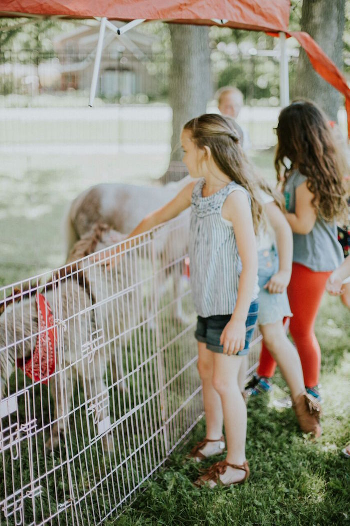 Petting zoo from a Modern Vintage Farm-to-Table Birthday Party on Kara's Party Ideas | KarasPartyIdeas.com (16)