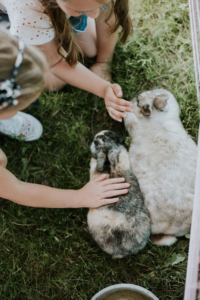 Petting zoo from a Modern Vintage Farm-to-Table Birthday Party on Kara's Party Ideas | KarasPartyIdeas.com (10)