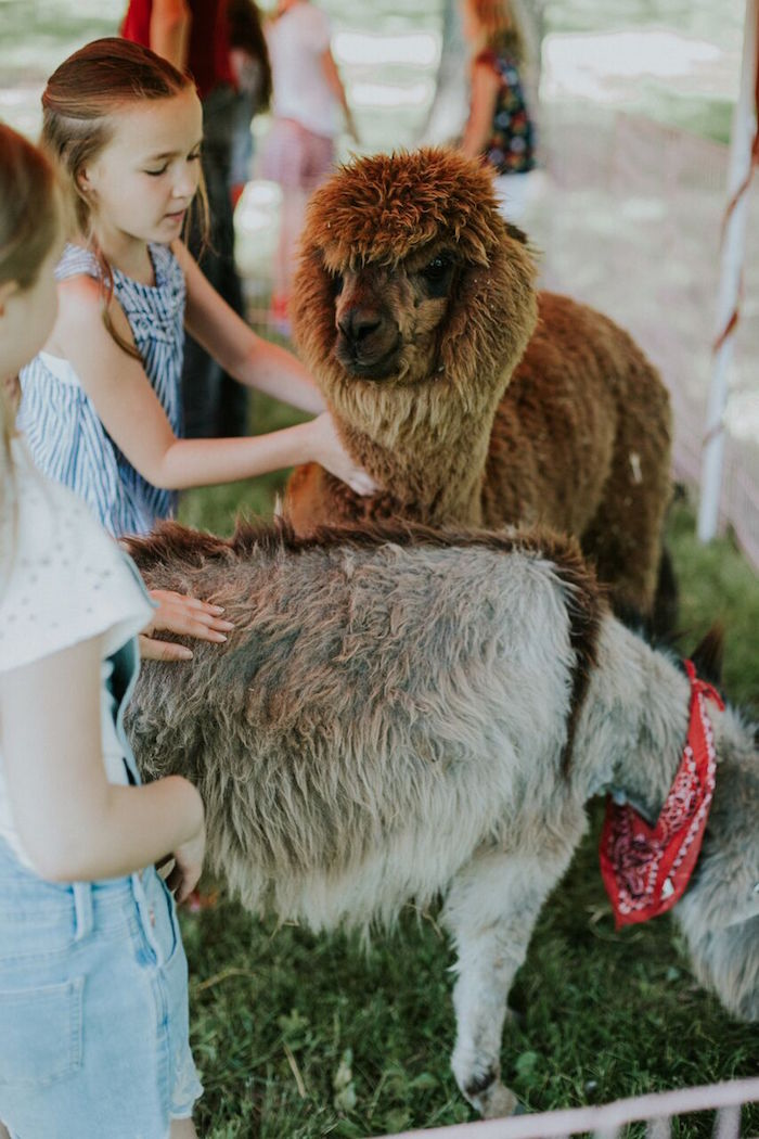 Petting zoo from a Modern Vintage Farm-to-Table Birthday Party on Kara's Party Ideas | KarasPartyIdeas.com (8)