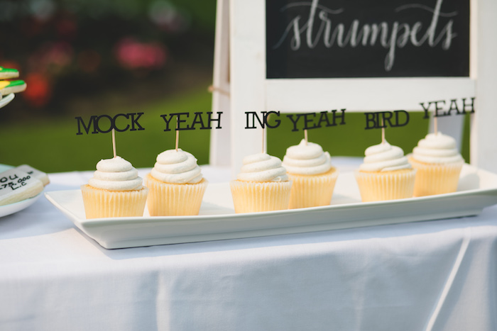 "Dumb & Dumber Cupcakes from a ""Dumb & Dumber"" Inspired ""Cute & Cuter"" Twins Birthday Party on Kara's Party Ideas 