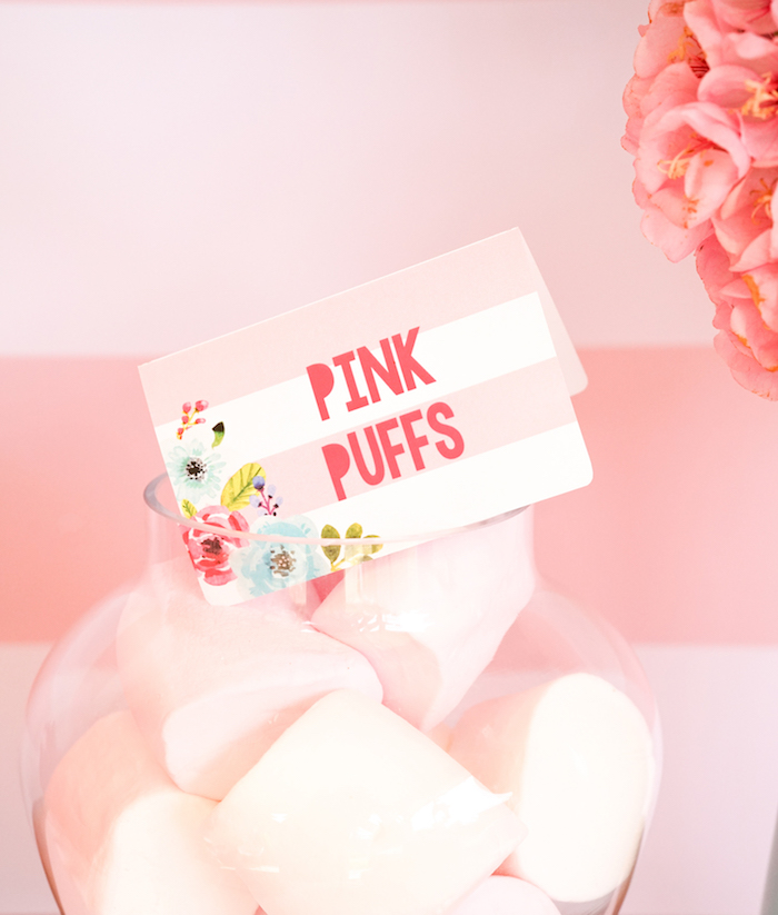 Pink Puffs - marshmallows from a Pink Flamingo Birthday Party on Kara's Party Ideas | KarasPartyIdeas.com (17)