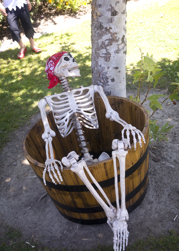 Skeleton from a Misty Cove Pirate Birthday Party via Kara's Party Ideas | KarasPartyIdeas.com