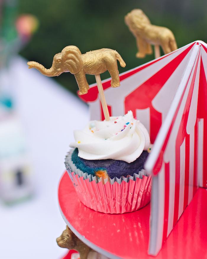 Vintage Circus Birthday Party on Kara's Party Ideas | KarasPartyIdeas.com (25)