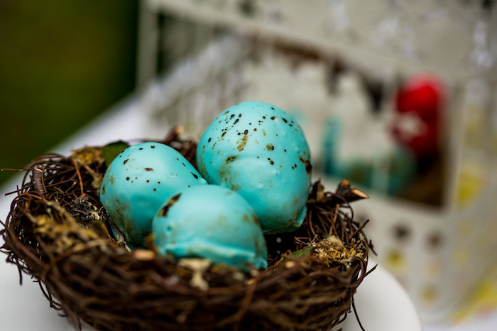 Bird nest from a Garden Tea Birthday Party on Kara's Party Ideas | KarasPartyIdeas.com (17)