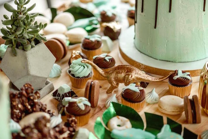 Desserts from a Glam Rustic Dinosaur Birthday Party on Kara's Party Ideas | KarasPartyIdeas.com (12)
