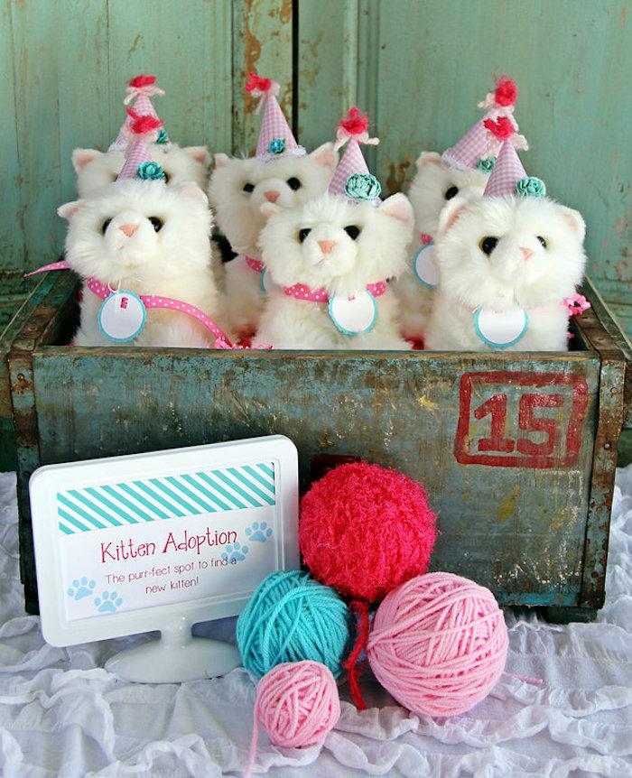 Adoptable plush kitties from a Kitten Adoption Party on Kara's Party Ideas   KarasPartyIdeas.com (18)