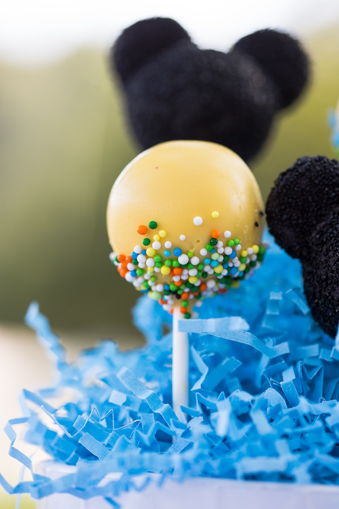 Sprinkled cake pop from a Mickey Mouse & Friends Ice Cream Party on Kara's Party Ideas | KarasPartyIdeas.com (20)