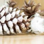 Nordic Luxe Christmas Party on Kara's Party Ideas   KarasPartyIdeas.com (6)