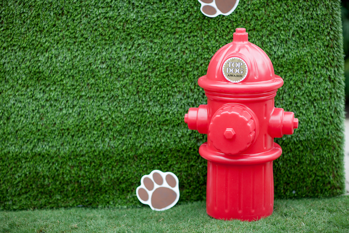 Fire Hydrant from a Puppy PAW-ty on Kara's Party Ideas | KarasPartyIdeas.com (11)